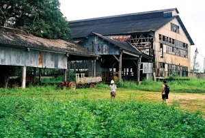 The Ruins of Fordlandia.
